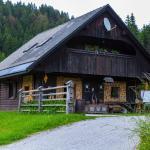 Apartment near Pokljuka, Bled