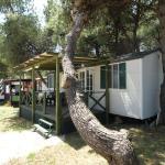 Mobile Home - Camp Dalmatia Privlaka, Privlaka