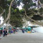 Hotel Pictures: Casita Ocean Glory, Caleta de Caballo