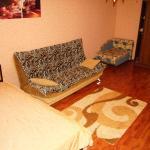 Apartment na Mironova, Severnyy