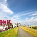 Osaka Tomato Guest House,  Osaka