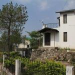 Pine Glade,  Bhowāli