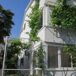 Apartmani Hortenzija, Budva