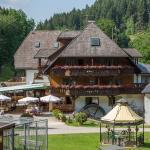 Hotel Pictures: Hotel Tannenmühle, Grafenhausen