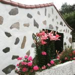 Hotel Pictures: Casa Rural Aguiar, Agulo