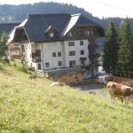 Zdjęcia hotelu: Nassfeld Sonnleiten Doris, Sonnenalpe Nassfeld