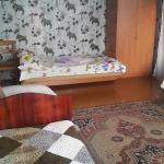 Hotel Pictures: One Bedroom Apartment on Derevyanko, Zhodzina