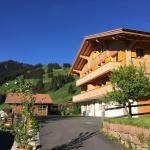 Hotel Pictures: Chalet Butterfly, Adelboden