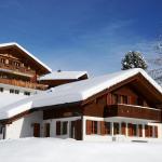 Apartment Dolomit EG 4.5- GriwaRent, Grindelwald