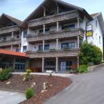 Hotel Pictures: Pension Landhaus Koller, Bodenmais