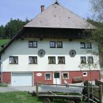 Hotel Pictures: Hinterhauensteinhof, Hornberg