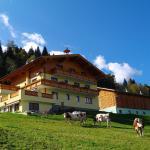 Biobauernhof Aslgut, Bad Hofgastein