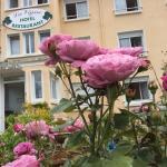 Hotel La Vigne, La Roche-Posay