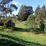 Rolling Hills Country Stay B&B, Tauranga