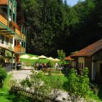 Fotos del hotel: Naturidyll Hotel Hammerschmiede, Anthering