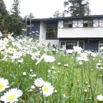 Pension Lausanne, Fujikawaguchiko