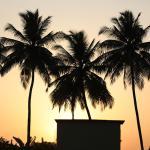 Tripvillas @ Saikrupa Garden Resort, Bordi