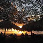 Tholo B&B Beach, Tholón
