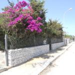 Giardini di San vito, San Vito lo Capo