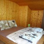 Hotel Pictures: Le Chamois, Arolla