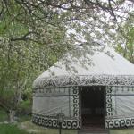 Bishkek International Hostel and Resort, Bishkek