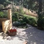 Agriturismo Il Truffarello,  Ripaioli