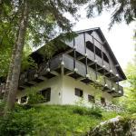 Apartments by Savica,  Bohinj