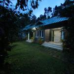 Lumino Wytemist, Munnar