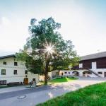 Hotel Pictures: Blaslhof, Dölsach