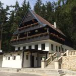 Hotel Pictures: Hunting Lodge Vitkov, Sokolov