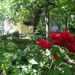 11 Guramishvili Guest House, Borjomi