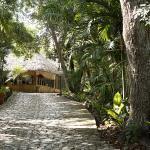 Hotel Jungle Lodge Tikal, Tikal