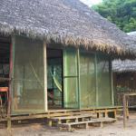 Tokon Homestay, Puerto Maldonado