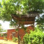 kataragama elephant view bungalow, Kataragama