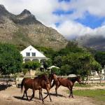 Howberry Guest Farm,  Cape Town