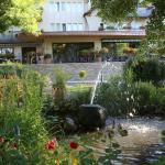 Hotel Pictures: Auberge Sundgovienne, Carspach