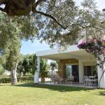 Villa Anemi, Nea Skioni