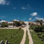 Da Silva Surfcamp, Lourinhã