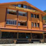 Danis Motel, Uzungol