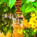 Crazy Coconut Villa, Unawatuna