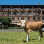 Hotel Pictures: Jungfrau Hotel, Wilderswil