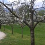 Parco di San Floriano,  Polcenigo