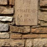 Hotel Pictures: L'appartement du Château de Bligny Les Beaune, Bligny-lès-Beaune