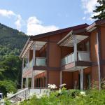 Villa Tapanoz, Uzungol