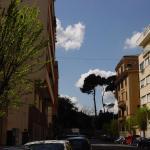 A Via Alessandro Torlonia, Rome