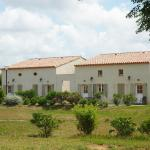 Hotel Pictures: Holiday home Codognan 4, Codognan