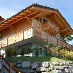Hotel Pictures: Holiday home Castle Hill Nendaz Station, Plan Fey