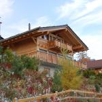 Hotel Pictures: Holiday home Le Mayen Nendaz Station, Plan Fey