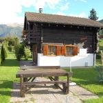Hotel Pictures: Chalet Montana, Nendaz