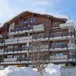 Apartment Bisse-Vieux D2, Nendaz